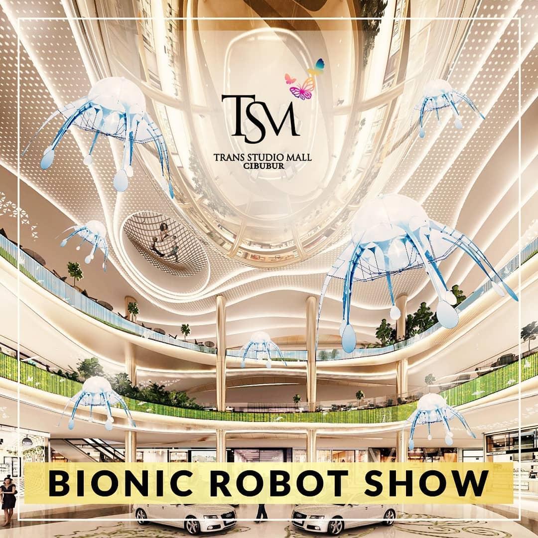 Bionic Robot Show
